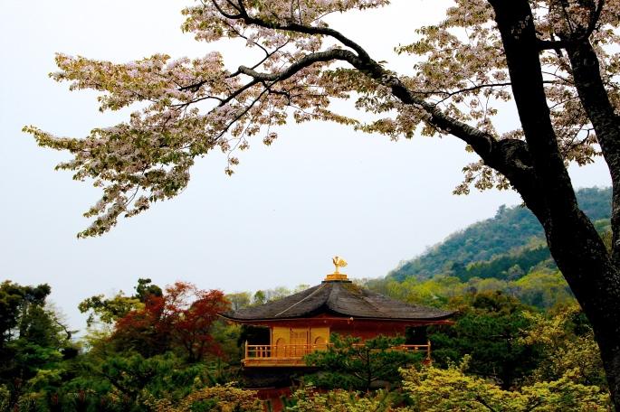 Kinkaku-ji (金閣寺  2