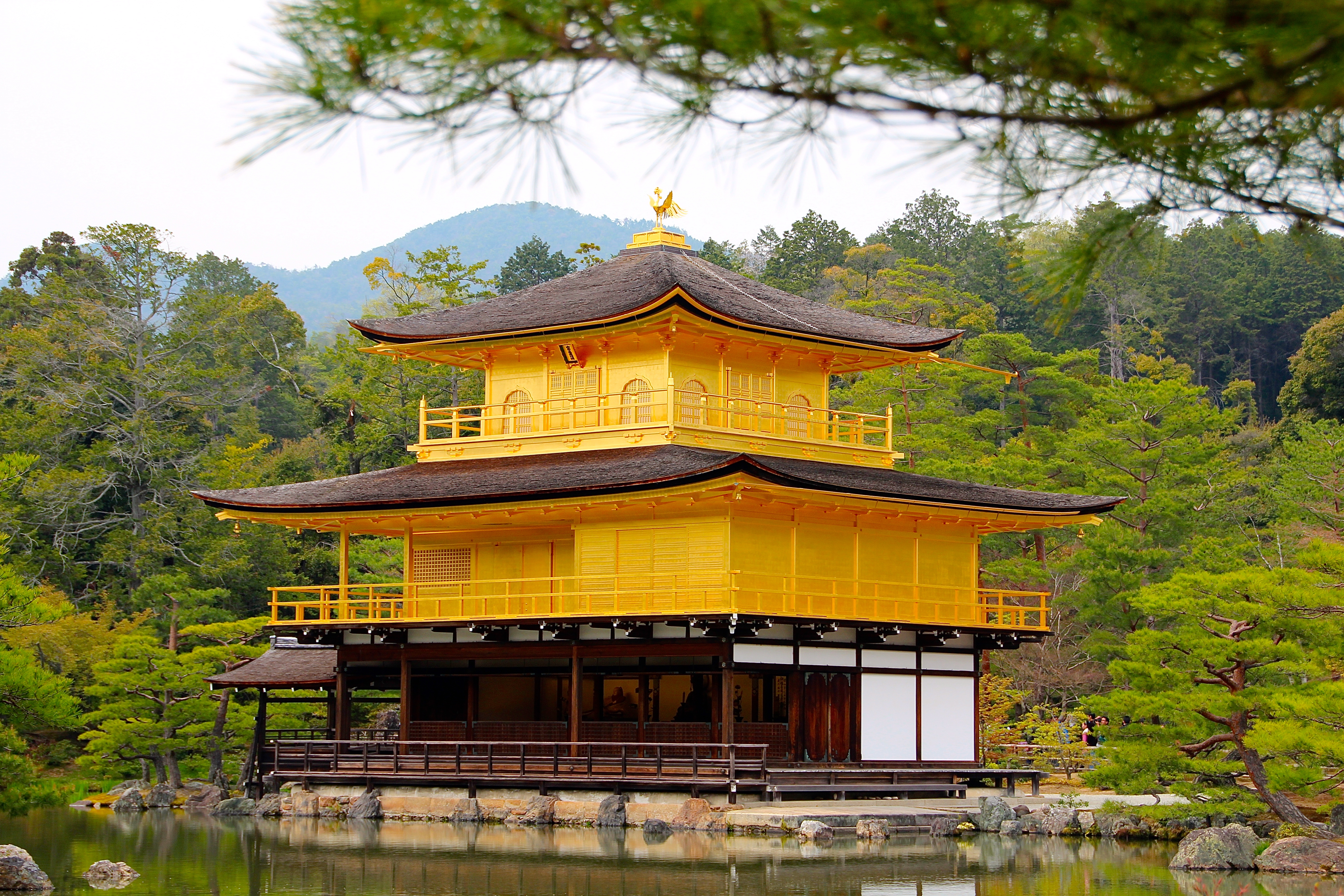 Kinkaku-ji (金閣寺); The Golden Pavilion Temple; Hiakus about Japan  Summer Set...
