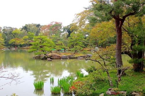 Kinkaku-ji (金閣寺 9