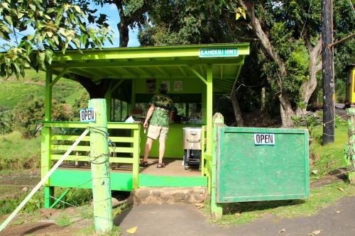 Last Stand in Kahakuloa