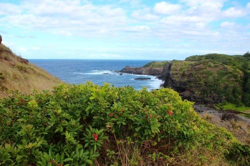 Olivine Pools. Maui 5