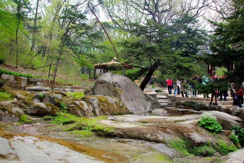 Secret Garden of Changdeokgung Palace 14
