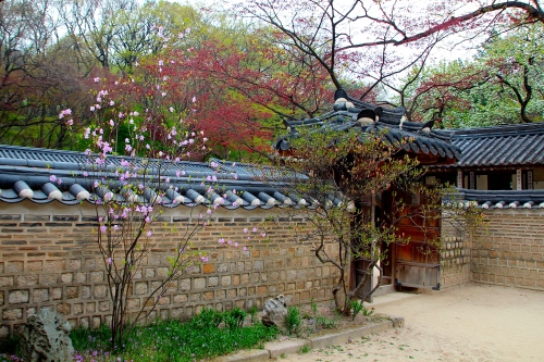 Secret Garden of Changdeokgung Palace 15