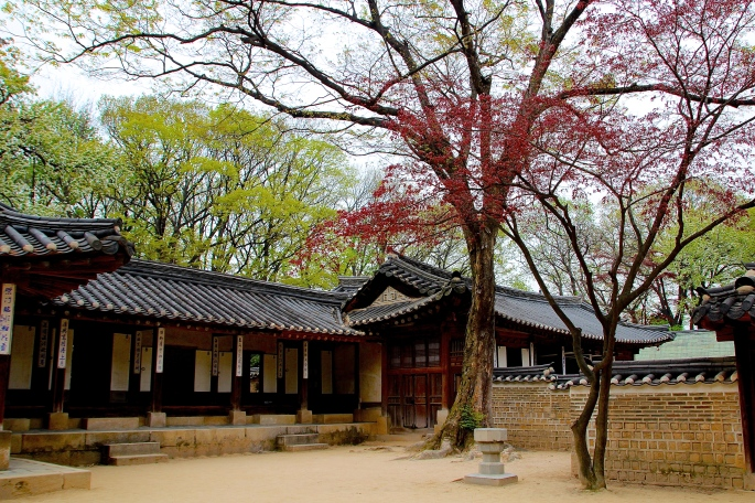 Secret Garden of Changdeokgung Palace 16