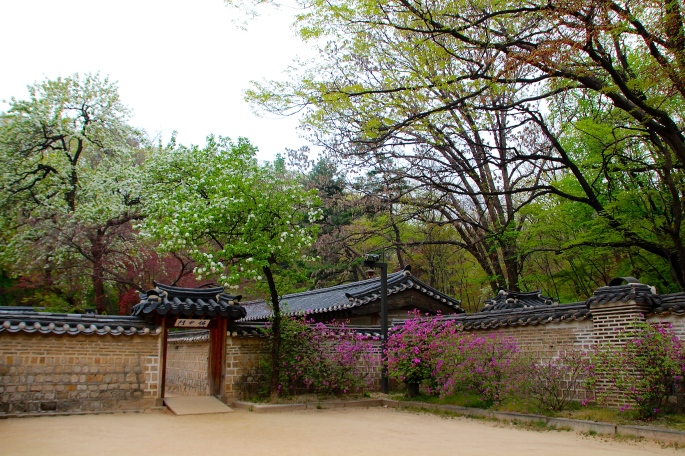 Secret Garden of Changdeokgung Palace 18