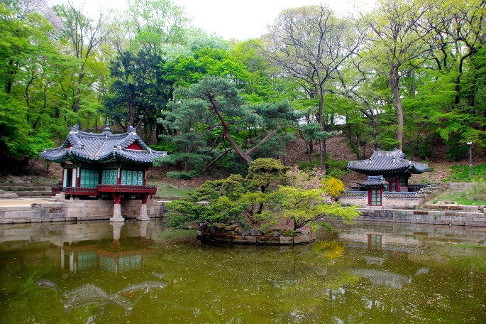 Secret Garden of Changdeokgung Palace 3