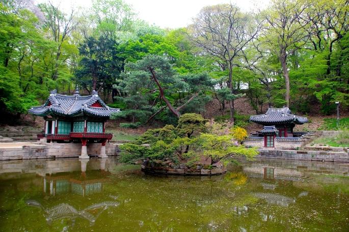 Secret Garden of Changdeokgung Palace 3