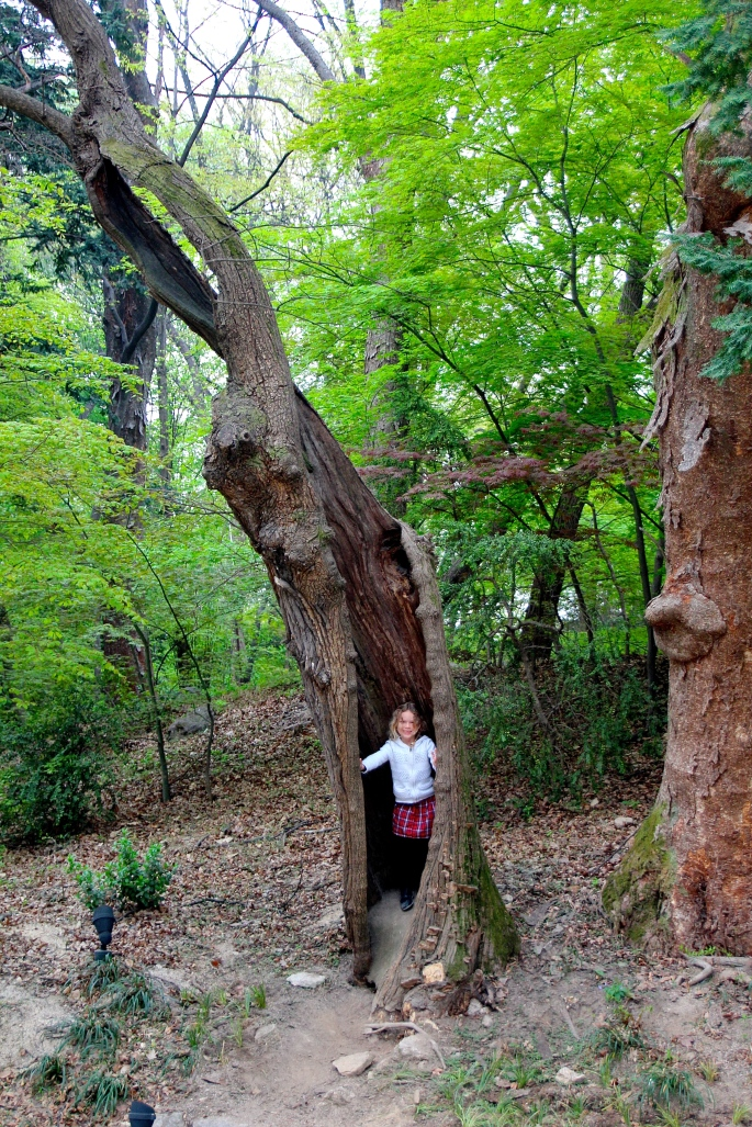 Secret Garden of Changdeokgung Palace 4