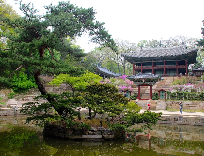 Secret Garden of Changdeokgung Palace 5