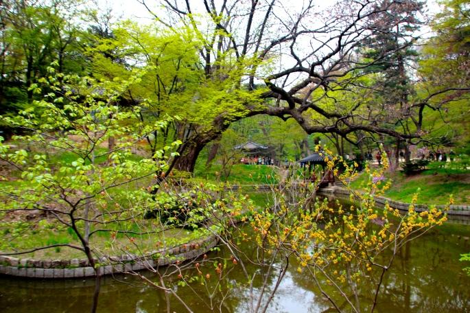 Secret Garden of Changdeokgung Palace 8