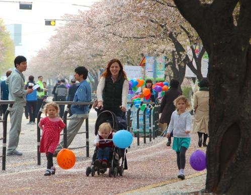Seoul Cherry Blossom Festival 9