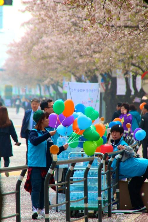 Seoul Cherry Blossom Festival Balloons