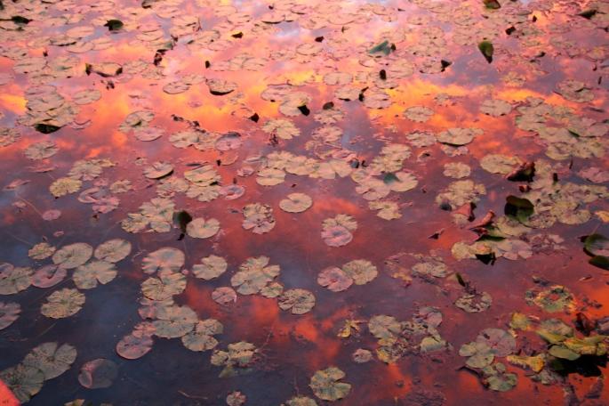 Sunrise reflected in lake