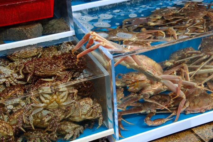 Crabs at Jagalchi Market
