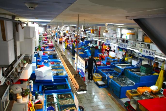 Jagalchi Fish Market 2