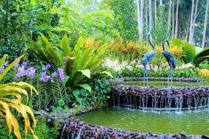 National Orchid Garden 1
