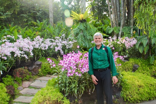National Orchid Garden 4