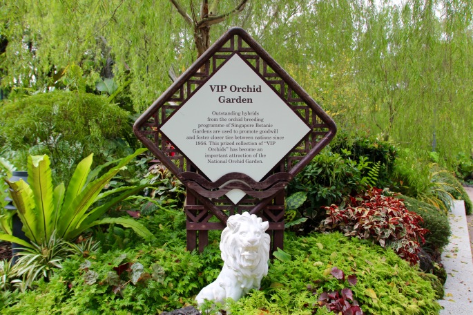 National Orchid Garden 6