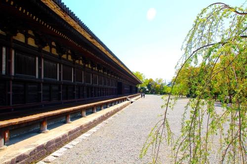 Sanjūsangen-dō 2
