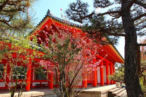 Sanjusangendo Temple 2