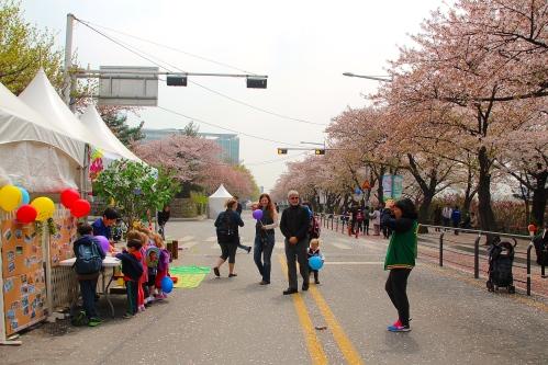 Seoul National Cherry Blossom Festival