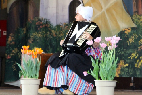 Accordian being played at Holland Tulip Time