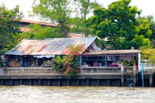 Chao Phraya River  Home in City