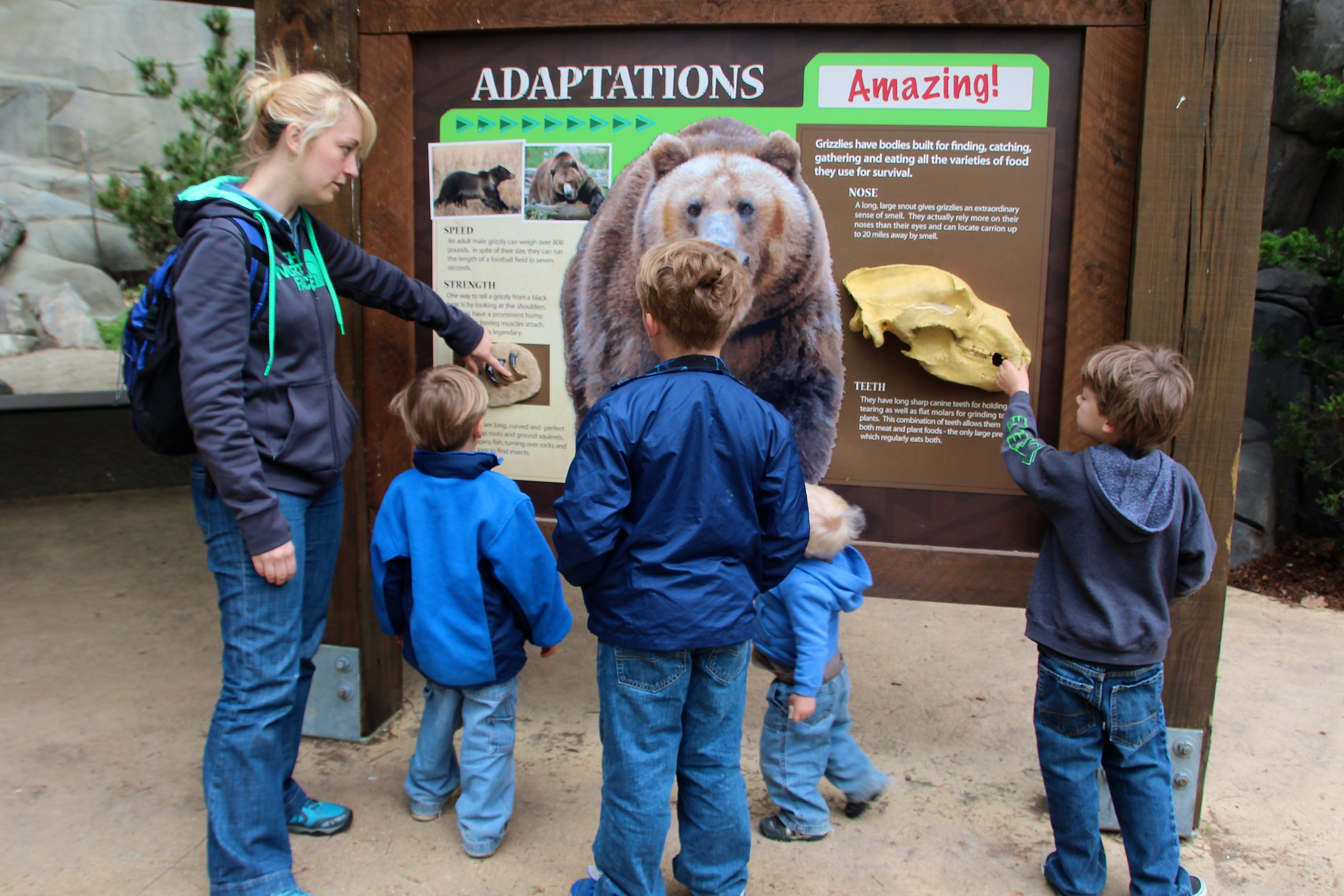 John Ball Zoo; something new at the zoo; pictures of zoo animals ...