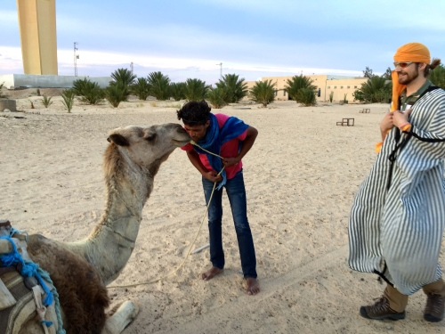 Guide  kissing camel