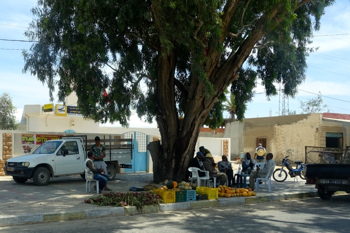 Men under shady tree. Tunisia