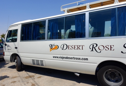 Our Desert Rose 3