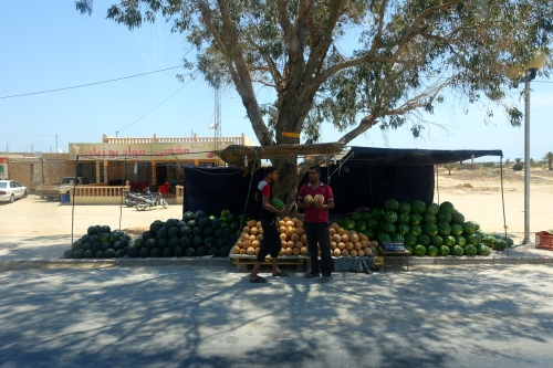 Roadside Stand. Tunisia