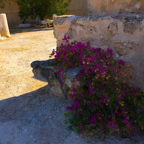Sbeitla, Tunisia 2