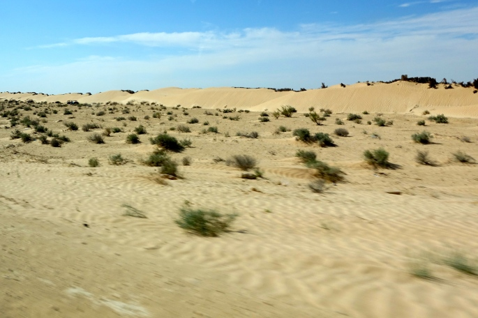 Shifting Sands of Sahara