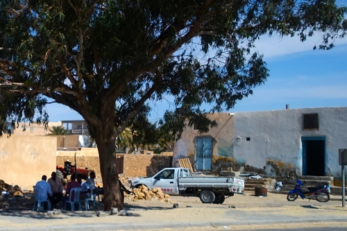 Tree with men under. Tunisia