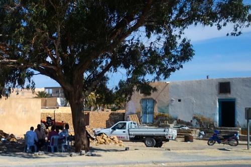 Tree with men under. Tunisia