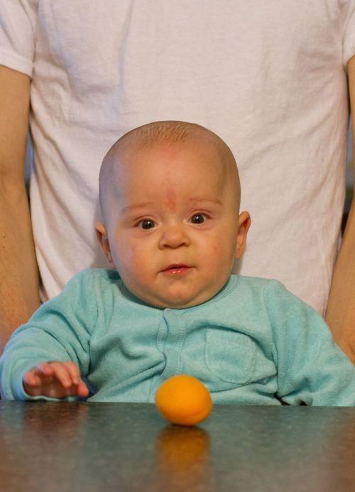 Apricot Boy