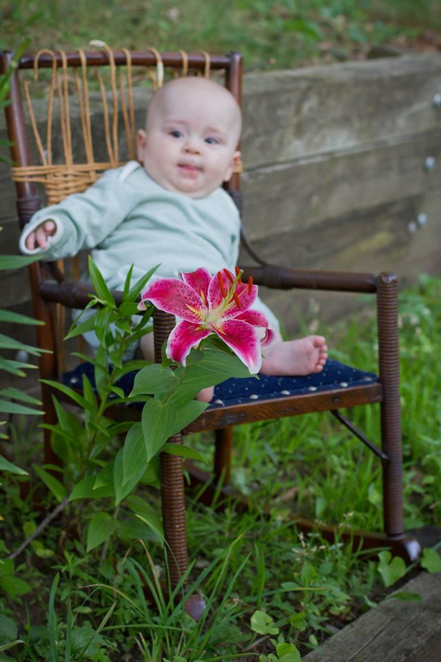 Baby and star-gazer lily