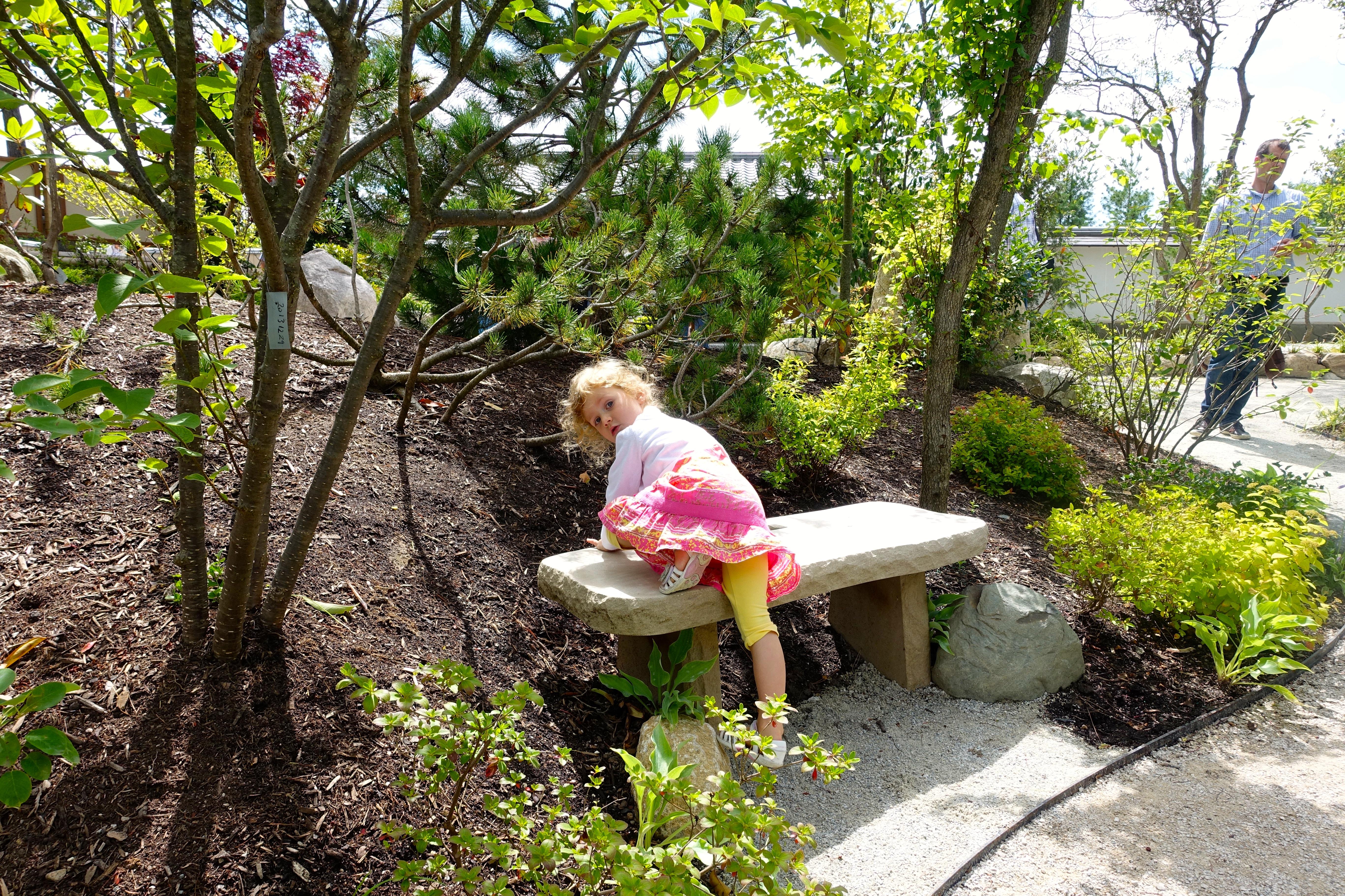 Bench at Frederik Meijer Japanese Garden