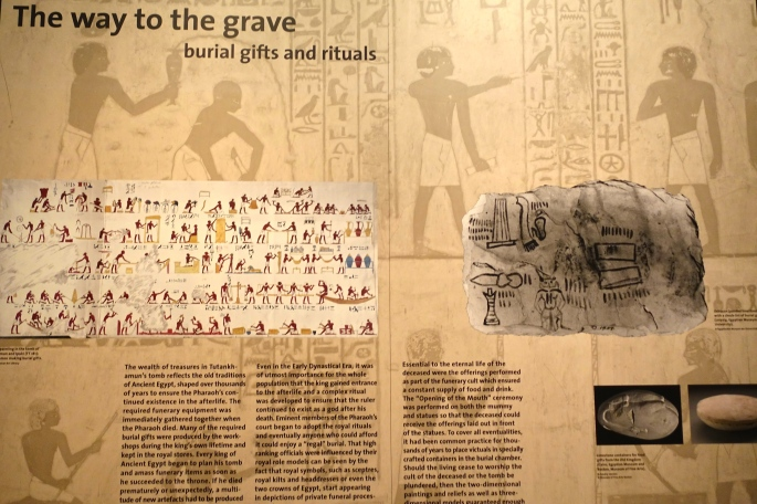 Discovering King Tut Exibition 8