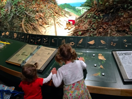 Grand Rapids Public Museum Learning bird songs