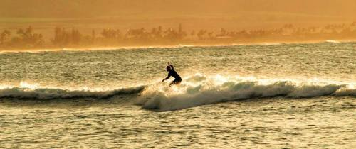 Michael surfing