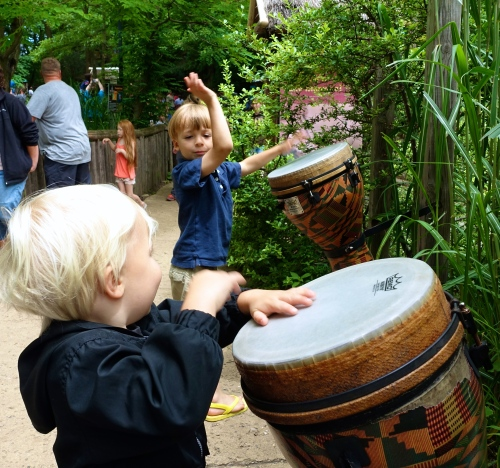 Playing Drums at at John Ball Zoo