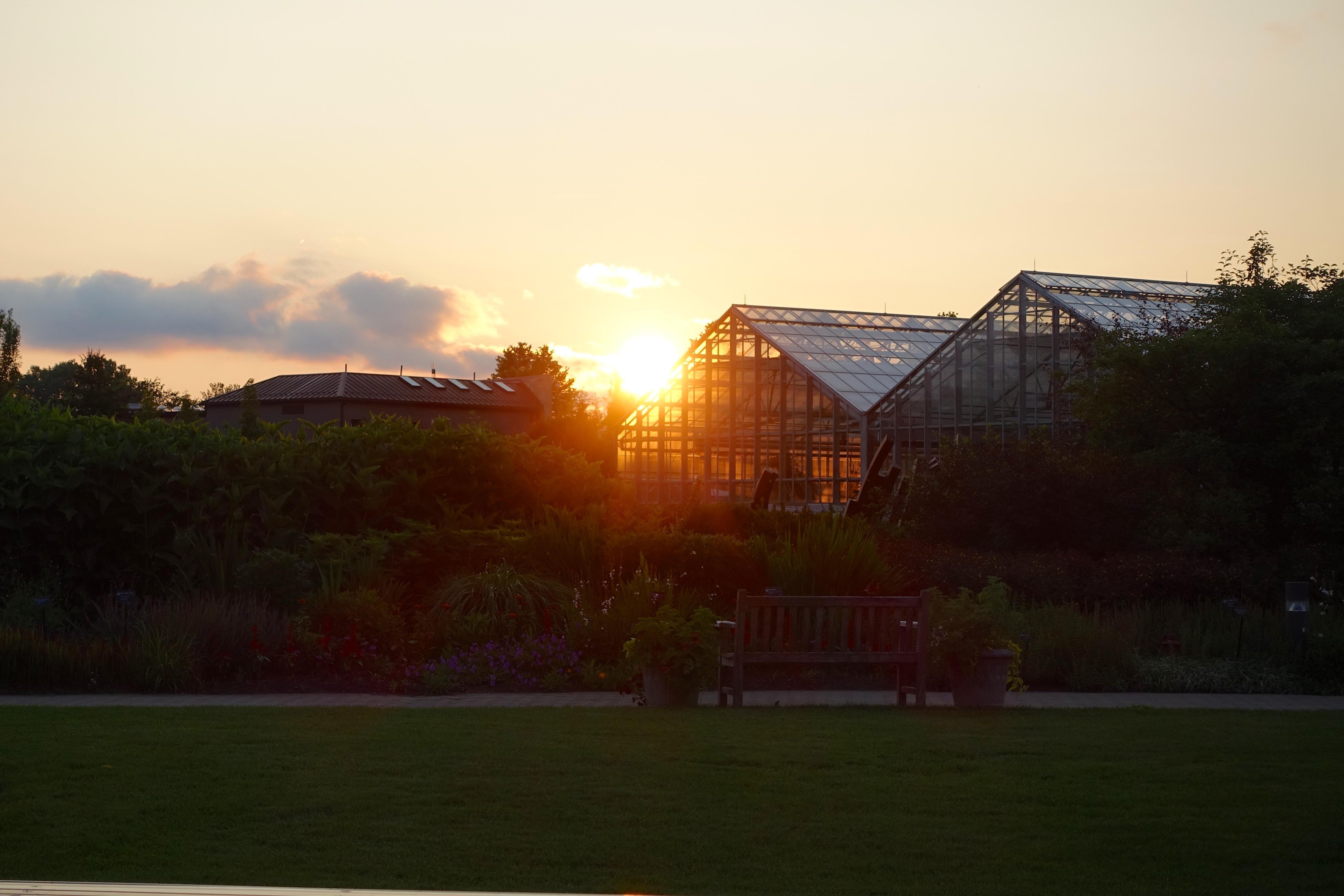 Sunset at Meijer Garden