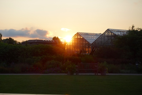 Sunset at Meijer Garden