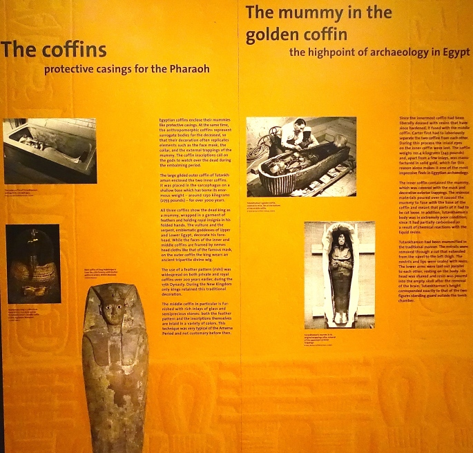 The Mummy in the Golden Coffins