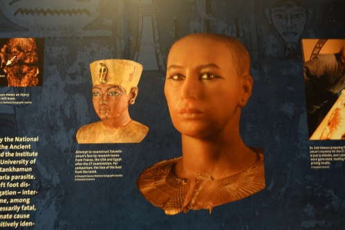 What King Tut may have looked like