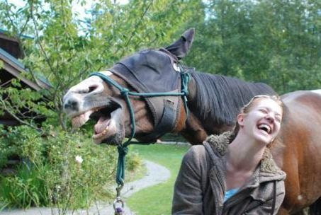 Mule and lady laughing together