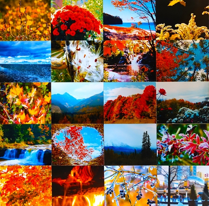 20 Autumn-Winter Scenes copy