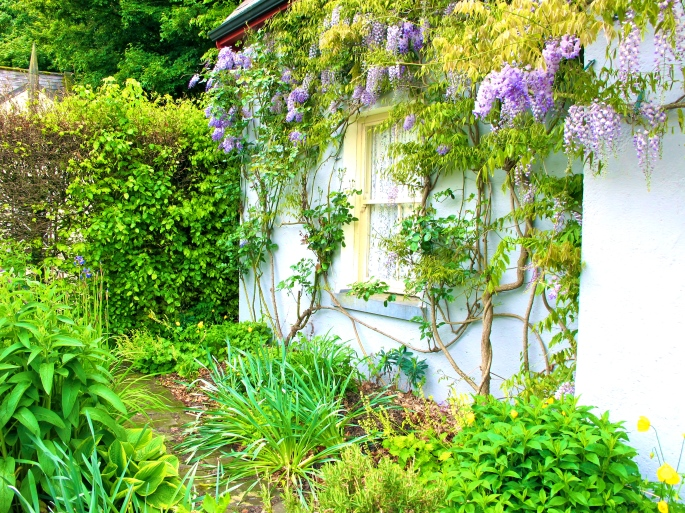 Cottage in Bunratty Folk Park